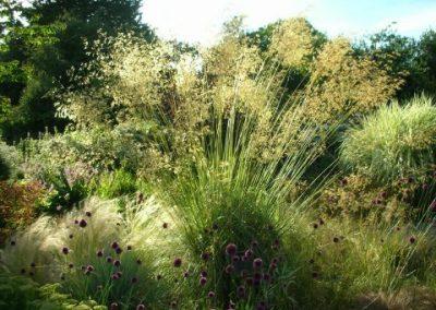 Promenade Grasses Garden