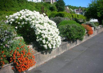 Promenade May